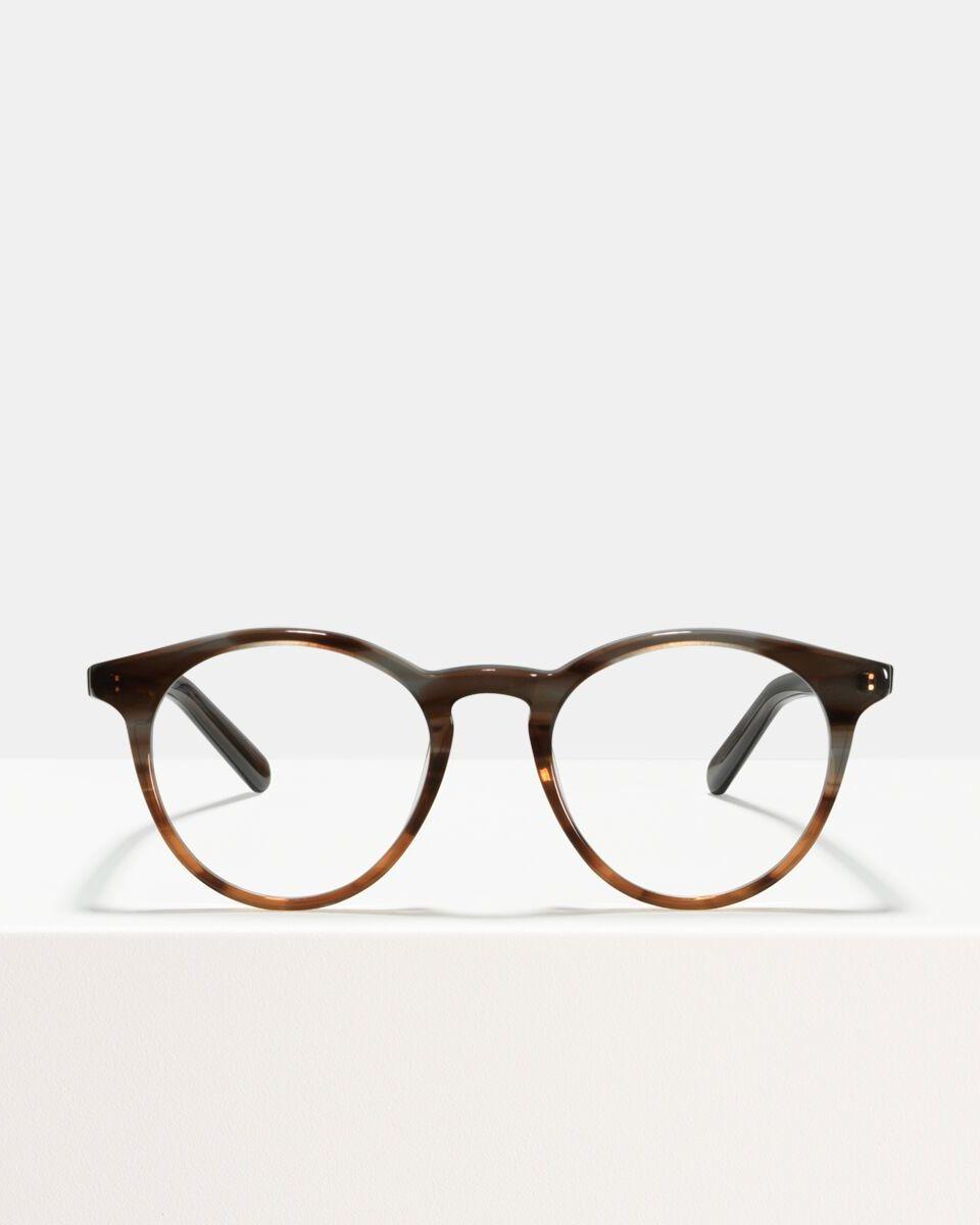 Ace & Tate Glasses | round acetate in Brown, Grey, Orange