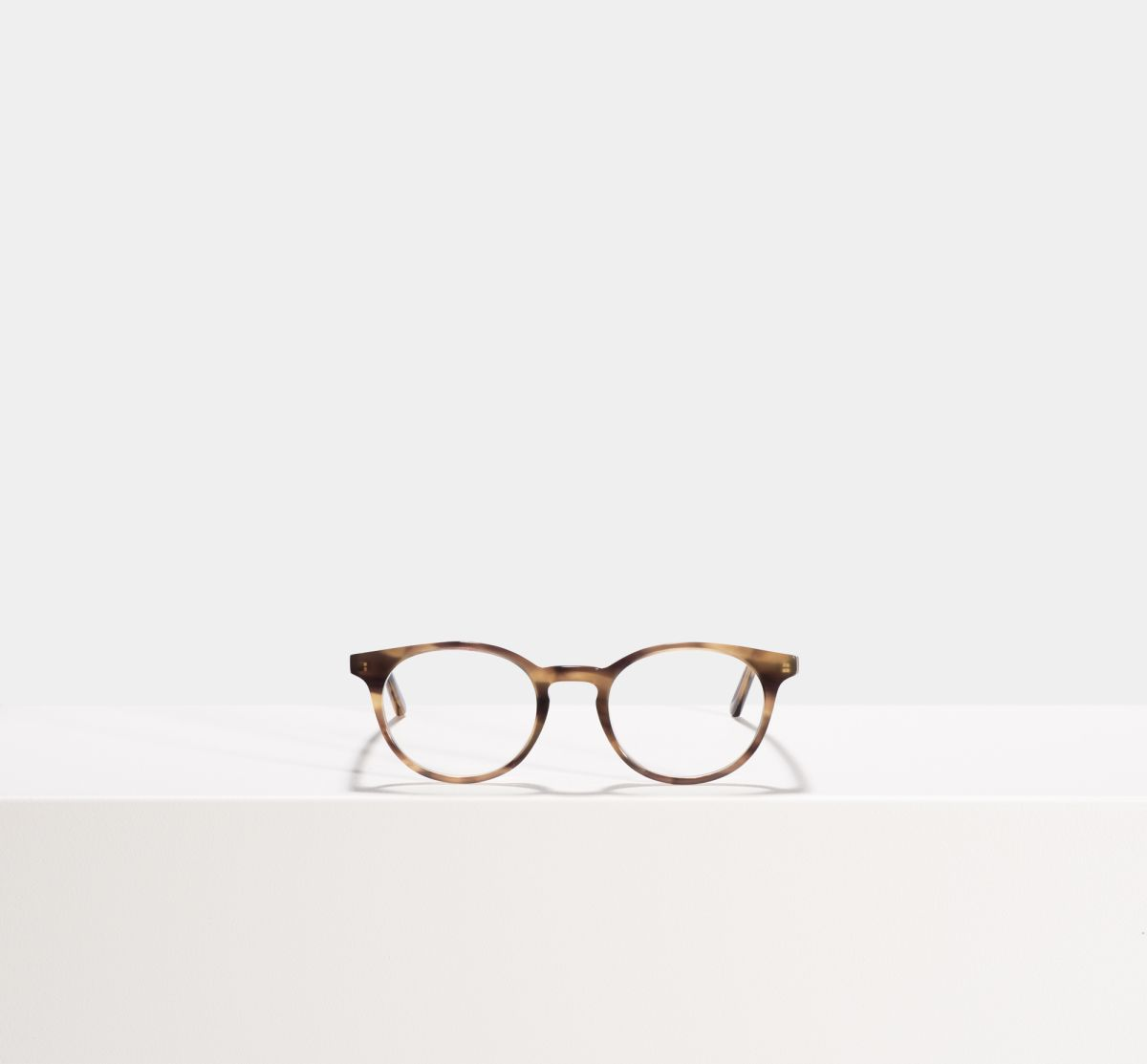 Steve round acetate glasses in Taupe Tortoise by Ace & Tate