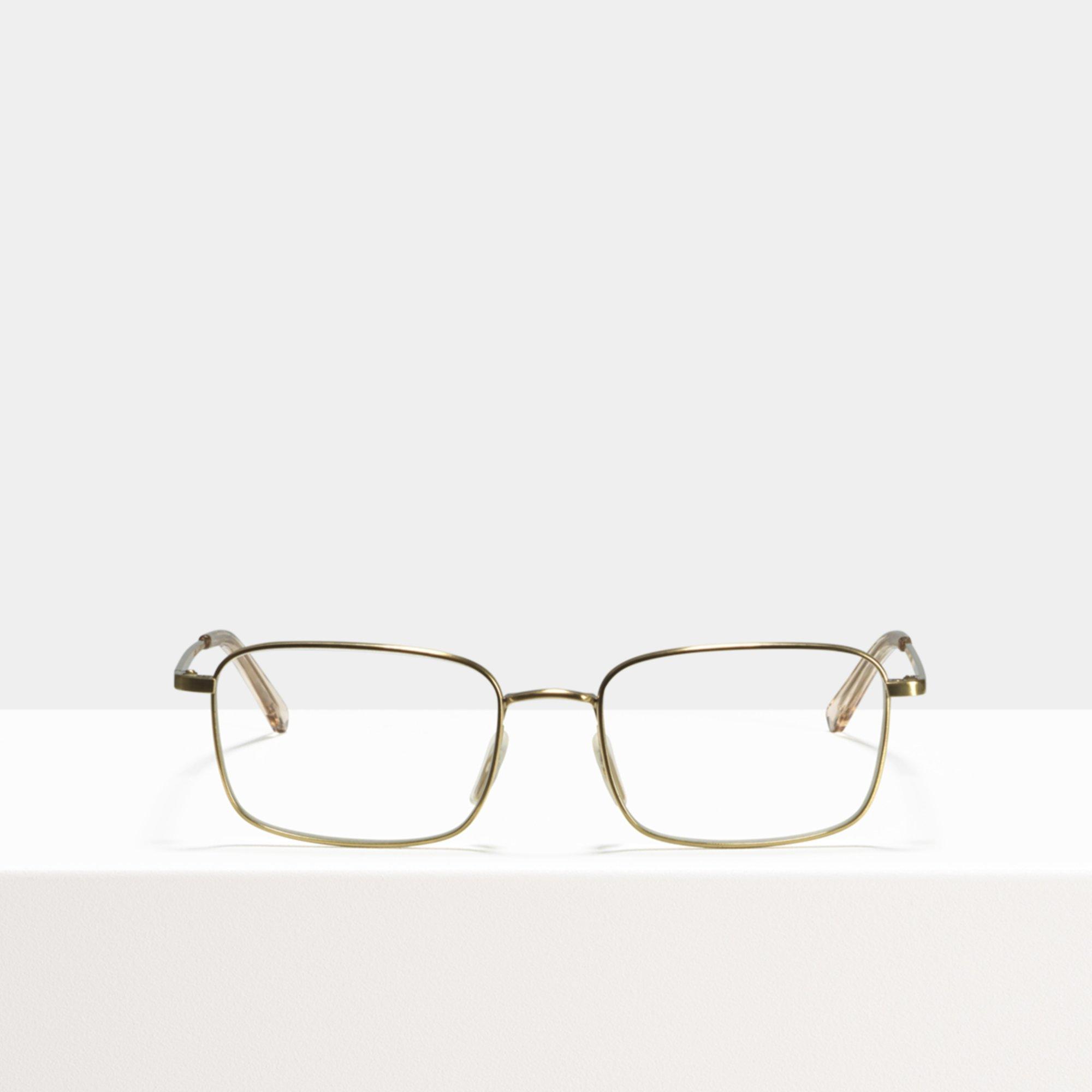 Ace & Tate Glasses | rectangle titanium in Gold