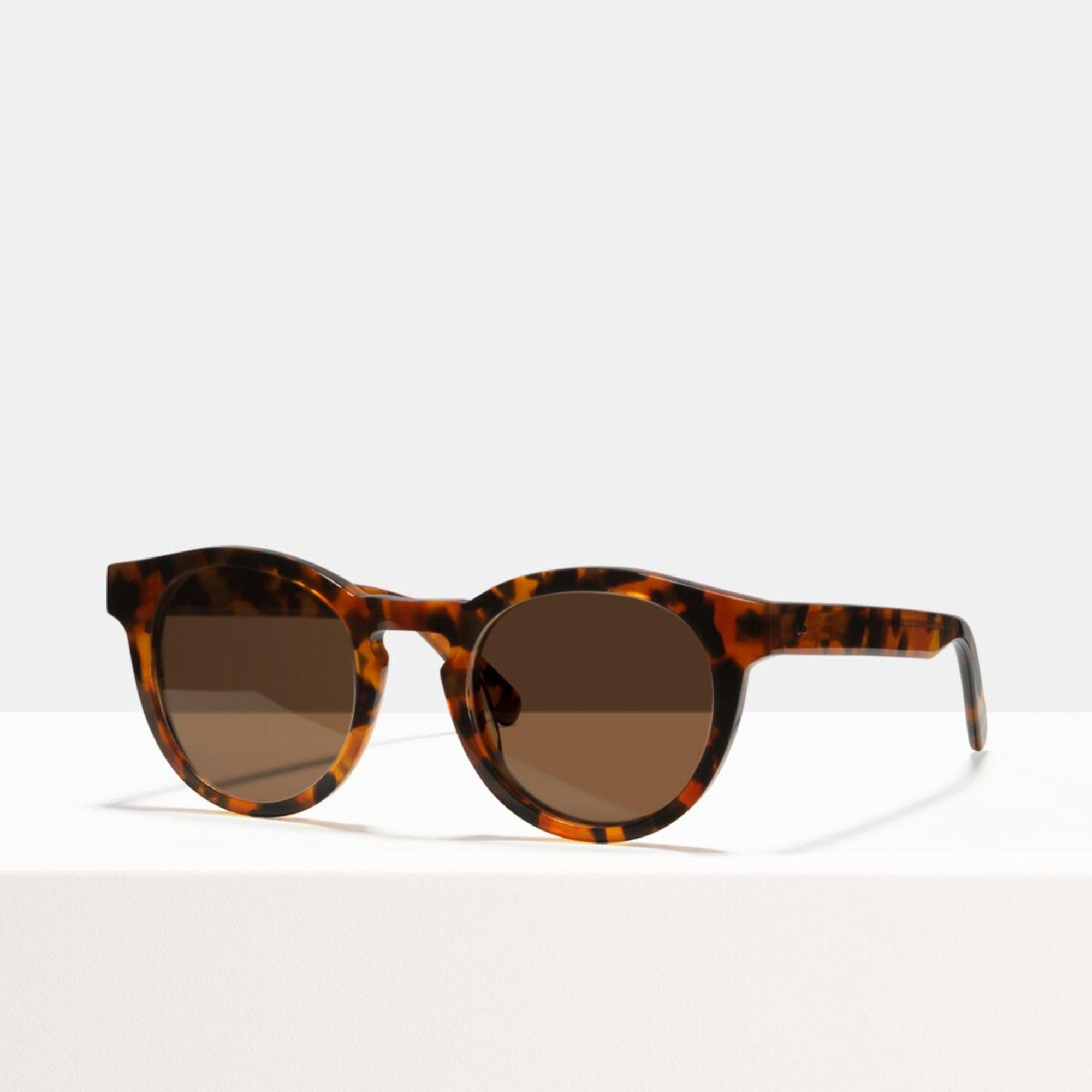 Ace & Tate Sunglasses   round acetate in Black, Brown, Orange, Red