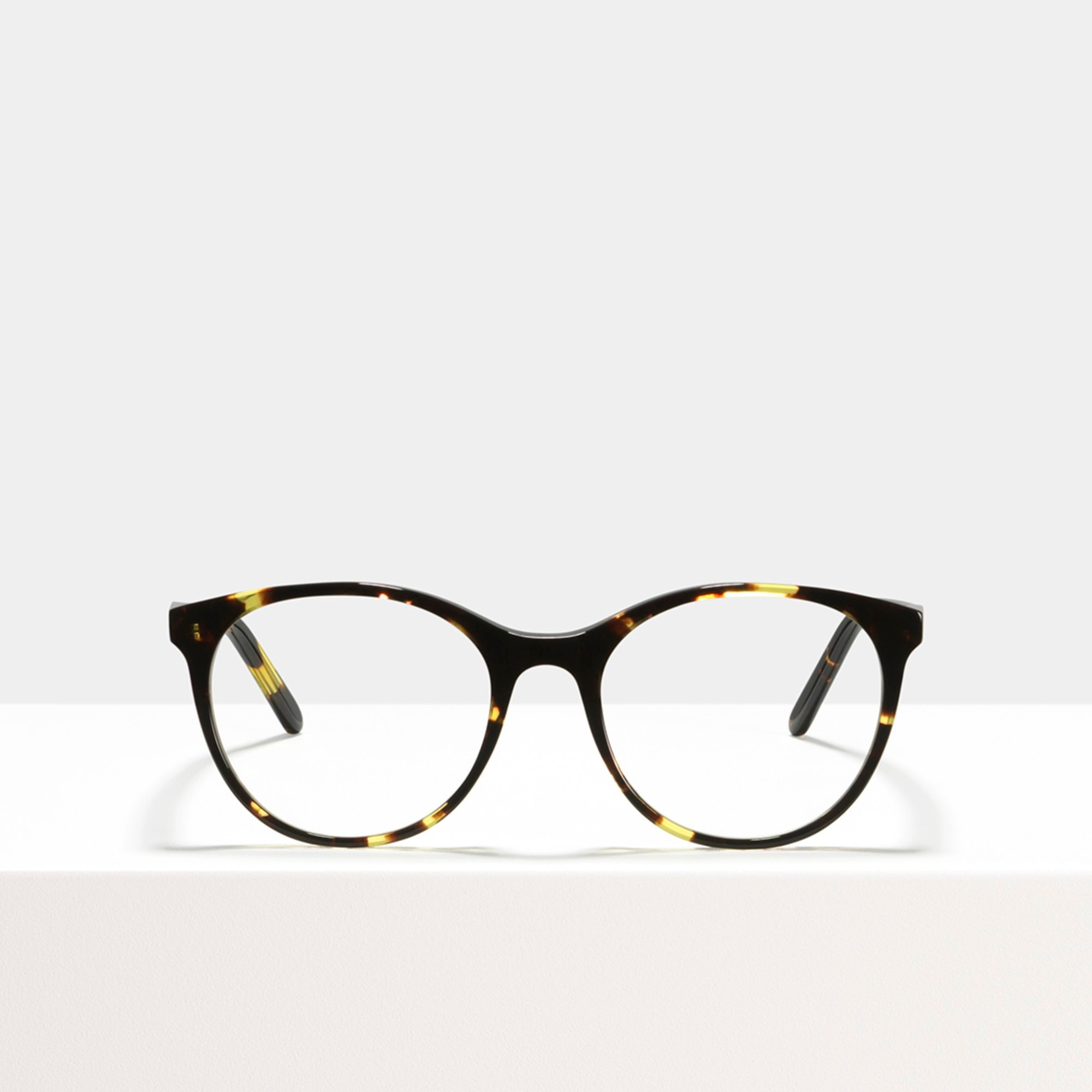 Ace & Tate Glasses   round acetate in Brown, Yellow