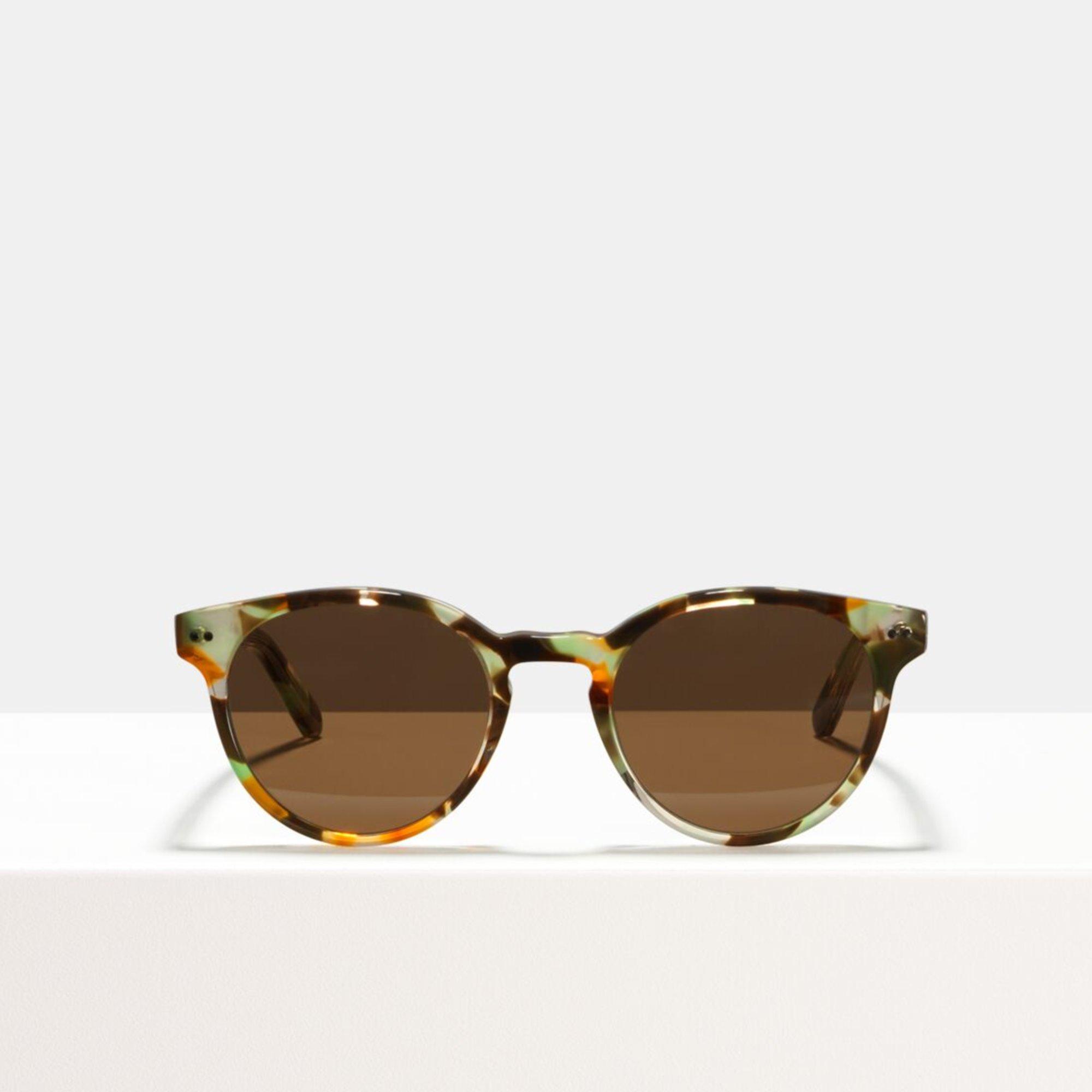Ace & Tate Sunglasses   round acetate in Brown, Green, multicolor, Orange, Yellow