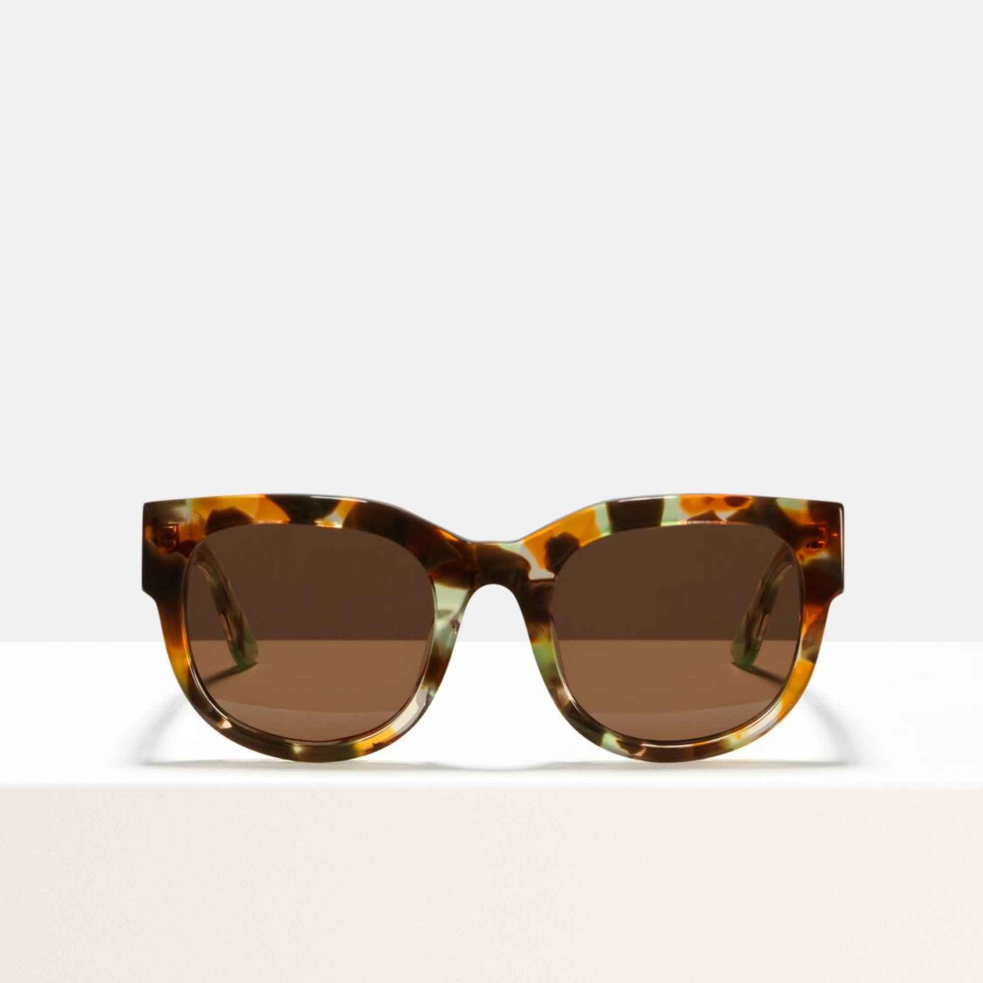 Ace & Tate Sunglasses   round acetate in Brown, Green, Orange